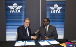 IATA-AFRAA : Main dans la main pour le développement des transports aériens en Afrique